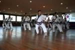 2008 Korea KDJ training 2.jpg