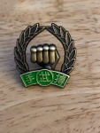 green belt MDK pin.jpg