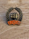 Orange belt pin.jpg